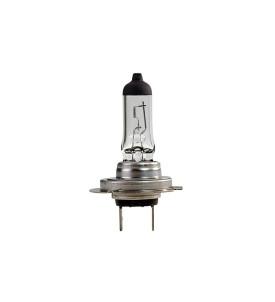 Ampoule H7 PX 26D 24V 70W iode
