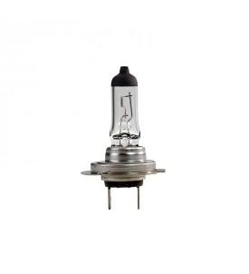 Ampoule H7 PX 26D 24V 70W iode en boîte